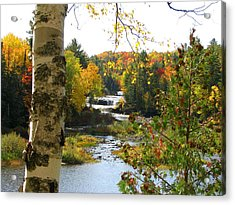 Lower Tahquamenon Falls In October No 1 Acrylic Print