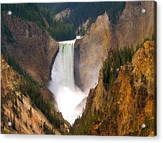 Acrylic Print featuring the photograph Lower Yellowstone Falls by Eric Tressler