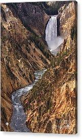 Lower Yellowstone Falls II Acrylic Print by Mark Kiver