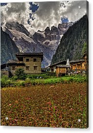 Lower Yubeng Town Crops Acrylic Print by James Wheeler