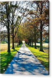 Lowry's Lane Acrylic Print by Betty Smithhart