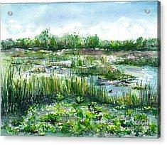 Loxahatchee Marsh Acrylic Print