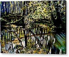 Lubianka-4 Mystery Of Swamp Forest Acrylic Print