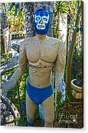 Luche Libre - 01 Acrylic Print by Gregory Dyer