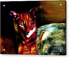 Lucifer Sam Tiger Cat Acrylic Print