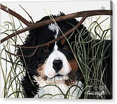 Lucy You've Got Some'splainin To Do Acrylic Print