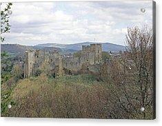Ludlow Castle Acrylic Print by Tony Murtagh