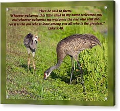 Luke 9 48 Acrylic Print by Dawn Currie
