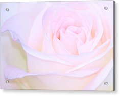 Lullaby Acrylic Print by The Art Of Marilyn Ridoutt-Greene