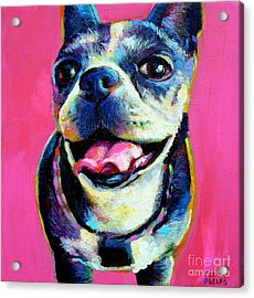 Lulu Acrylic Print by Robert Phelps