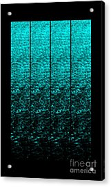 Acrylic Print featuring the photograph Luminescence 1a by Darla Wood