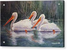 Luminous White Pelicans Acrylic Print