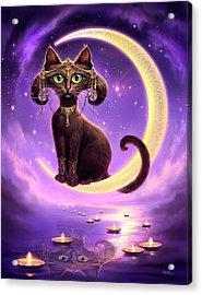 Luna Acrylic Print by Jeff Haynie