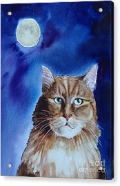 Lunar Cat Acrylic Print by Kym Stine