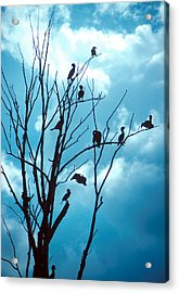 Lunch Crowd Acrylic Print