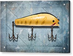 Lure IIi Acrylic Print by April Moen