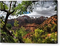 Acrylic Print featuring the photograph Luscious View by Barbara Manis