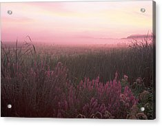 Lustrife Sunrise Great Meadows Concord Ma Acrylic Print