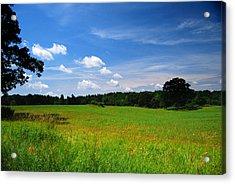 Lwv40057 Acrylic Print