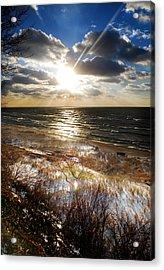 Lwv50026 Acrylic Print