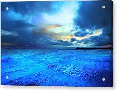 Lwv50030 Acrylic Print by Lee Wolf Winter