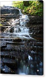 Lwv60001 Acrylic Print
