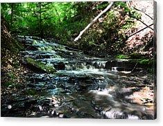 Lwv60013 Acrylic Print