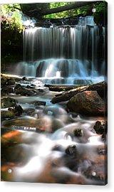 Lwv60016 Acrylic Print