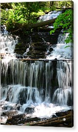 Lwv60017 Acrylic Print by Lee Wolf Winter