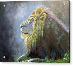 Lying In The Moonlight, Lion Acrylic Print