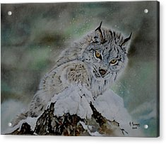 Lynx Playing With Snow Acrylic Print by Hendrik Hermans