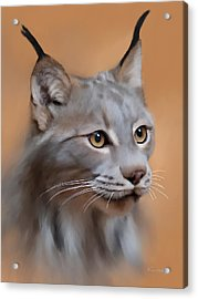 Lynx Portrait Acrylic Print