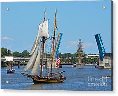 Lynx Topsail Schooner Acrylic Print by Rodney Campbell