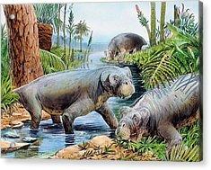 Lystrosaurus Acrylic Print