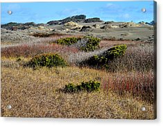 Acrylic Print featuring the photograph Ma-le'l Dunes by Jon Exley
