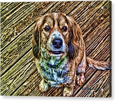 Acrylic Print featuring the digital art MAC by Robert Rhoads