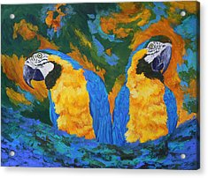 Acrylic Print featuring the painting Macaw Mates by Margaret Saheed