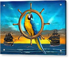 Macaw Pirate Parrot Acrylic Print