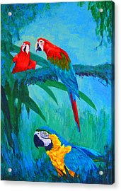 Acrylic Print featuring the painting Macaw Trio by Margaret Saheed