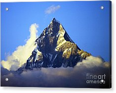 Acrylic Print featuring the photograph Machapuchare - Sacred Mountain by Jacqi Elmslie