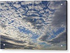 Mackerel Sky Natural Acrylic Print by Amanda Holmes Tzafrir