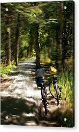 Mackinac Island Woods Acrylic Print by Randy Pollard