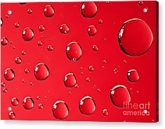 Macro Water Drop On Red Acrylic Print by Sharon Dominick