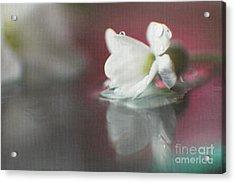Macro Wild Floral Textured Acrylic Print