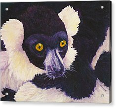 Madagascan Magic Acrylic Print by Margaret Saheed