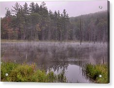 Acrylic Print featuring the photograph Madame Sherri's Pond IIi by Tom Singleton