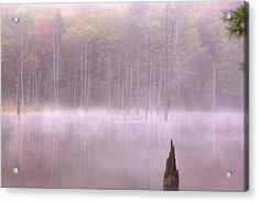 Acrylic Print featuring the  Madame Sherri's Pond by Tom Singleton