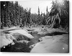 Acrylic Print featuring the photograph Madawaska River by David Porteus