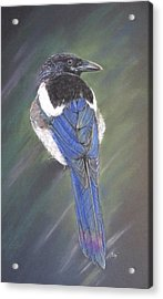 Maggie Acrylic Print by Turea Grice