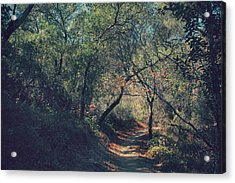 Magic Awaits Us Acrylic Print by Laurie Search